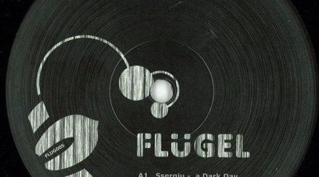 V.A. – Flugel005