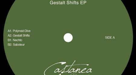 Alka Rex – GESTALT SHIFTS EP (VINYL ONLY)