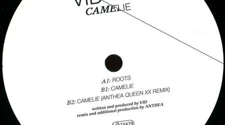 Vid – Camelie