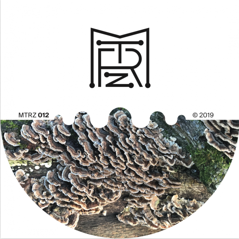 Ion Ludwig – A Better Future To Long EP // MTRZ012